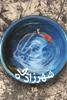 تصویر شهرزاد چاه